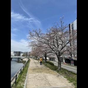 広島中区キックボクシングジム HADES WORK OUT GYM(ハーデスワークアウトジム) 最新情報:2021/03/29「広島キックボクシングハーデスジム体験」
